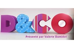 logo_dandco